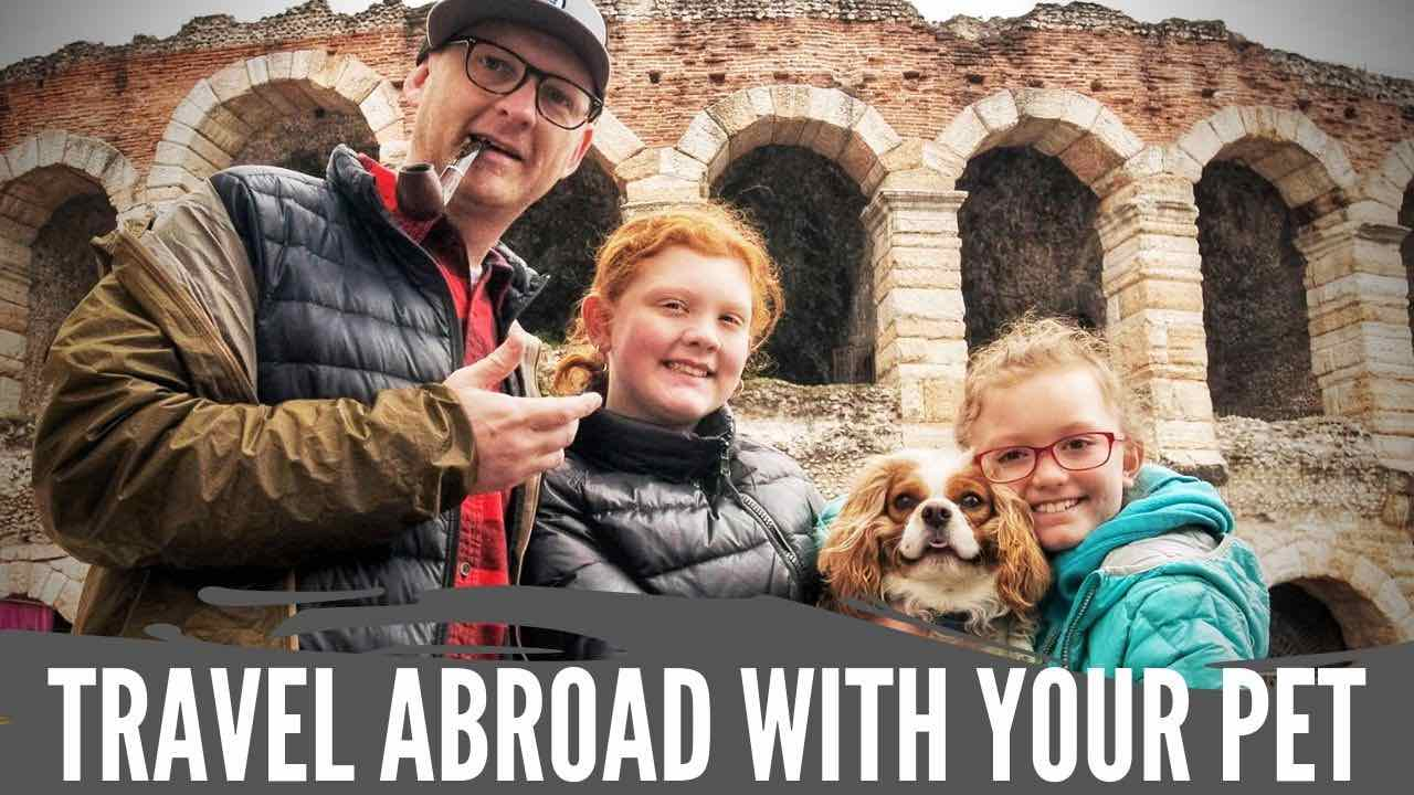 International Travel with Your Pet